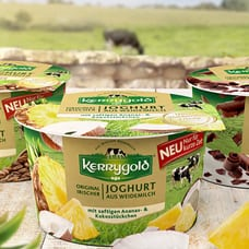 Kerrygold Yogurts in Germany
